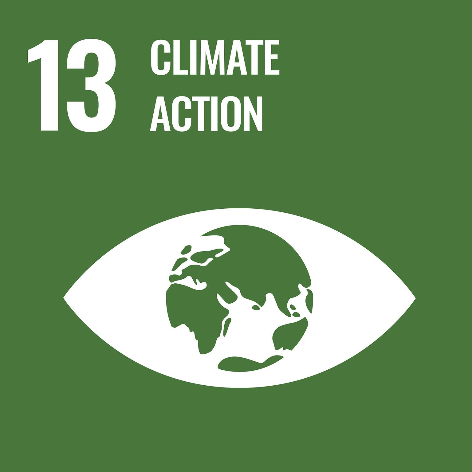 sustainable development goals: climate action